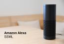 Verschiedene Stimmen und Betonungen in Alexa über ioBroker steuern